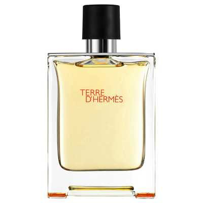 Вы можете заказать Hermes Terre d'Hermes без предоплат прямо сейчас
